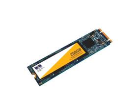 DRIVE SSD 256GB M.2 WINMEMORY 2280